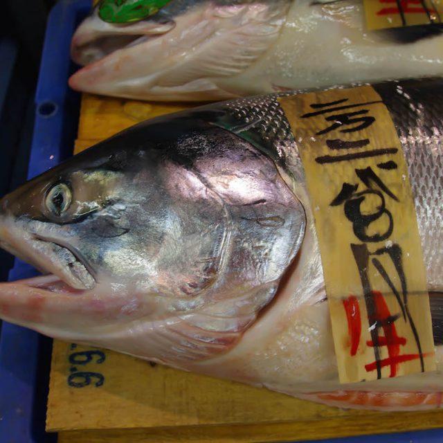 和商市場で鮭を選ぶ前に知っておきたい事